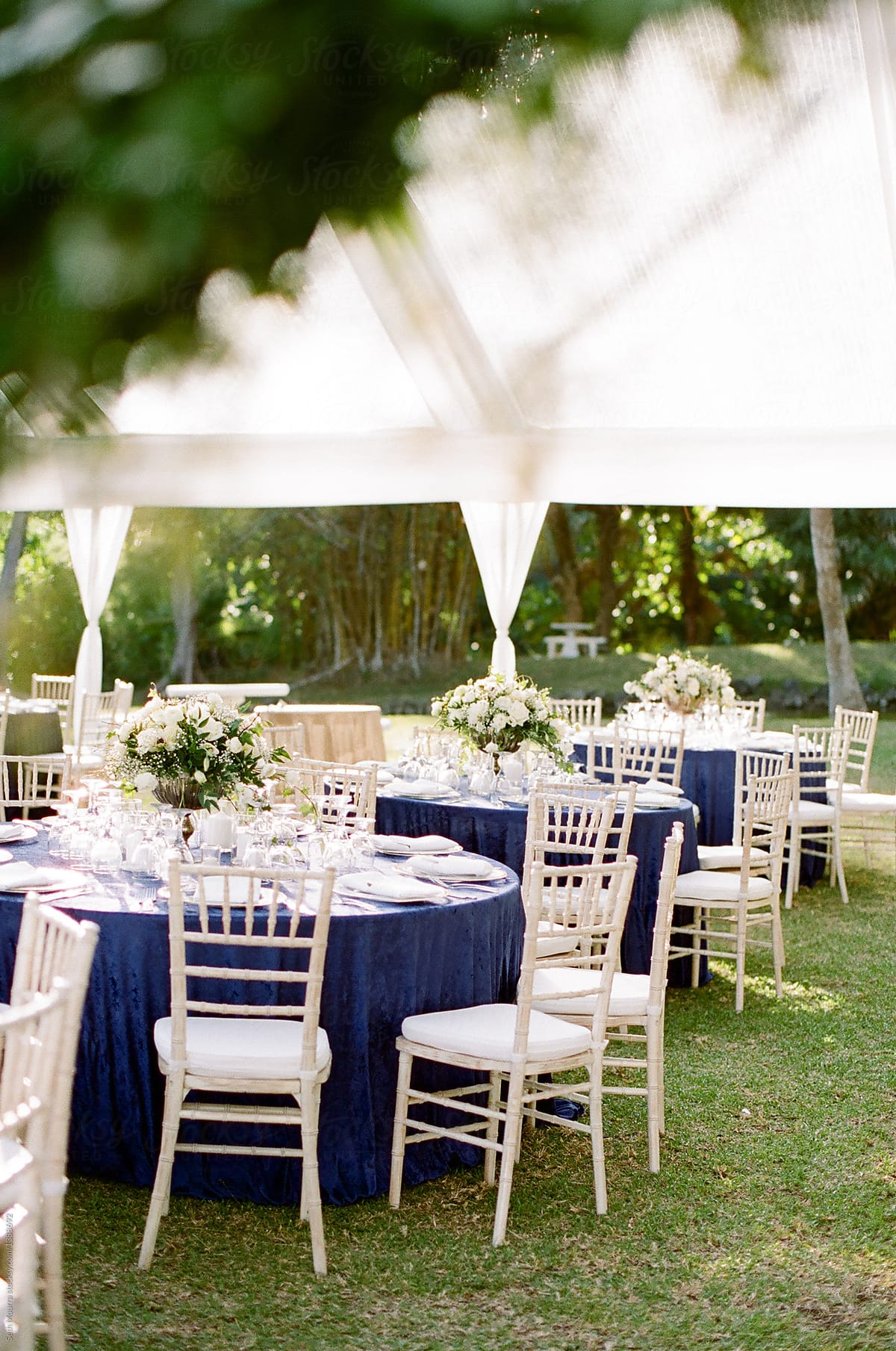 Ordinaire Elegant Outdoor Wedding Reception
