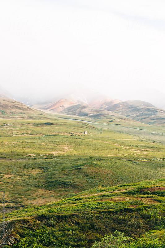 Lush Green Landscape by Luke Mattson for Stocksy United