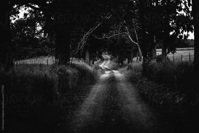 Backroads by Christian Gideon for Stocksy United