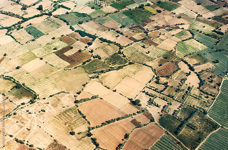 Aerial Shot of Plots of Farmland in South East Asia by VISUALSPECTRUM for Stocksy United