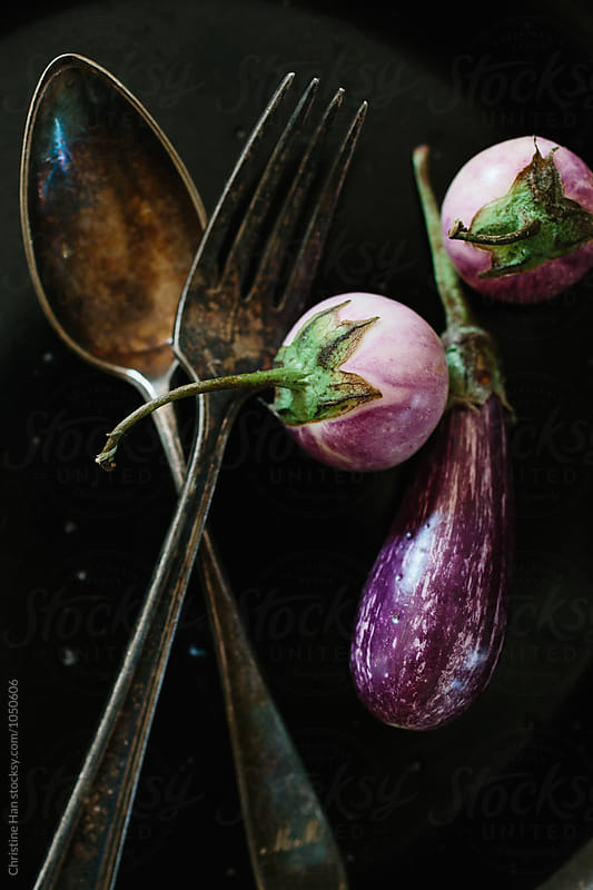 eggplant still life by Christine Han for Stocksy United