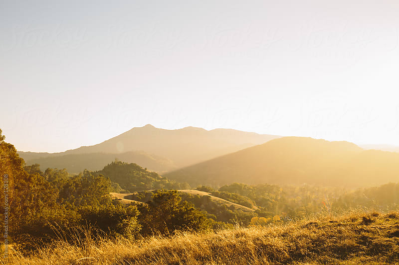 Rolling hills landscape Marin County, California by Trinette Reed for Stocksy United