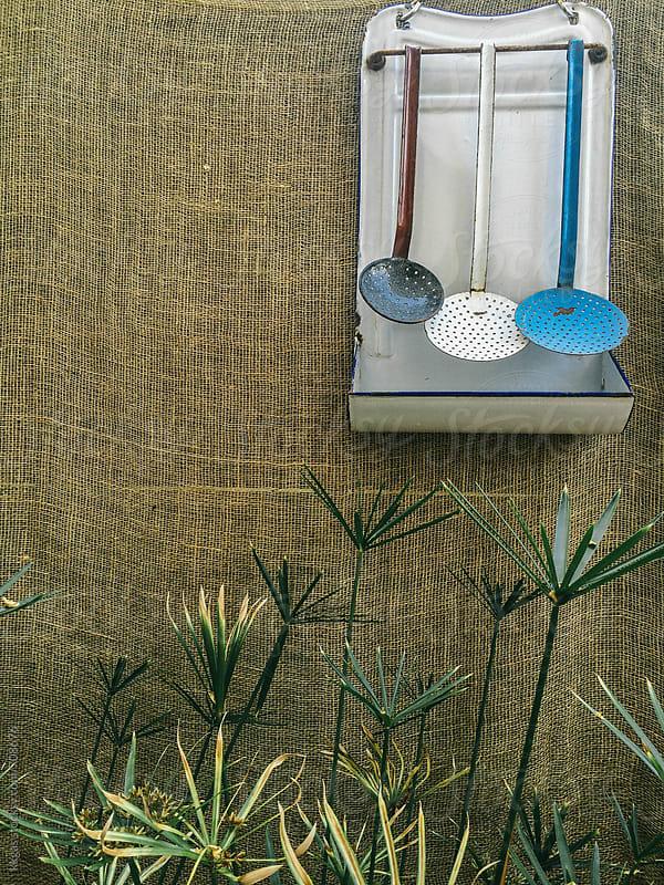 Vintage enamelware ladle rack and umbrella plant. by kkgas for Stocksy United