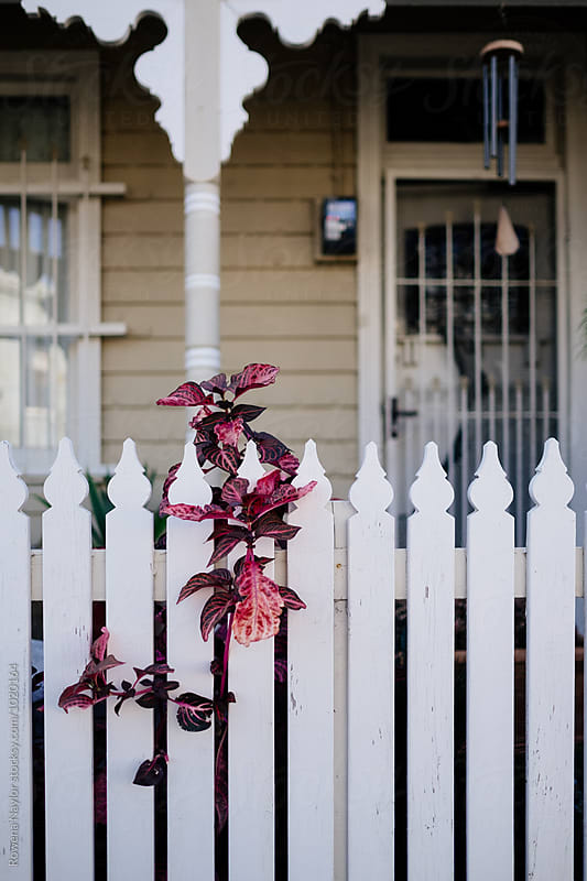 Picket Fence of Heritage inner city home in Melbourne by Rowena Naylor for Stocksy United