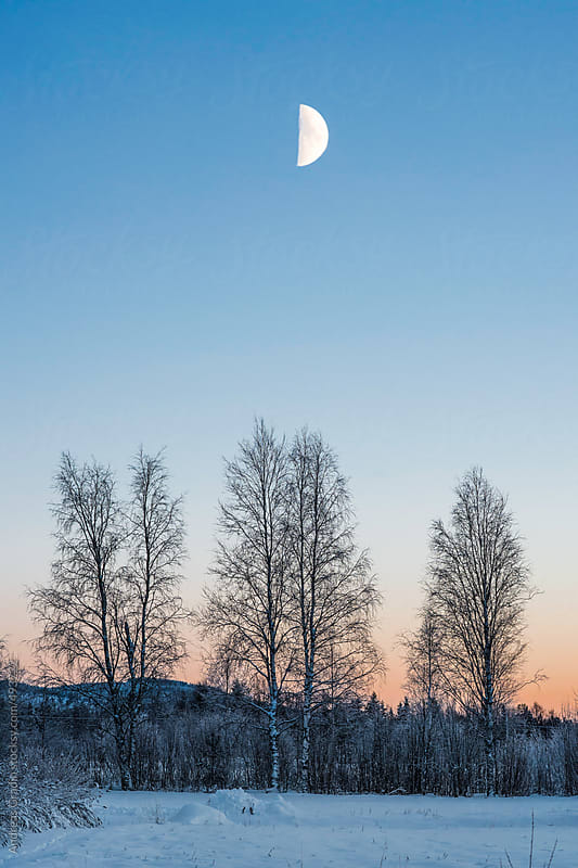 winter moon by Andreas Gradin for Stocksy United