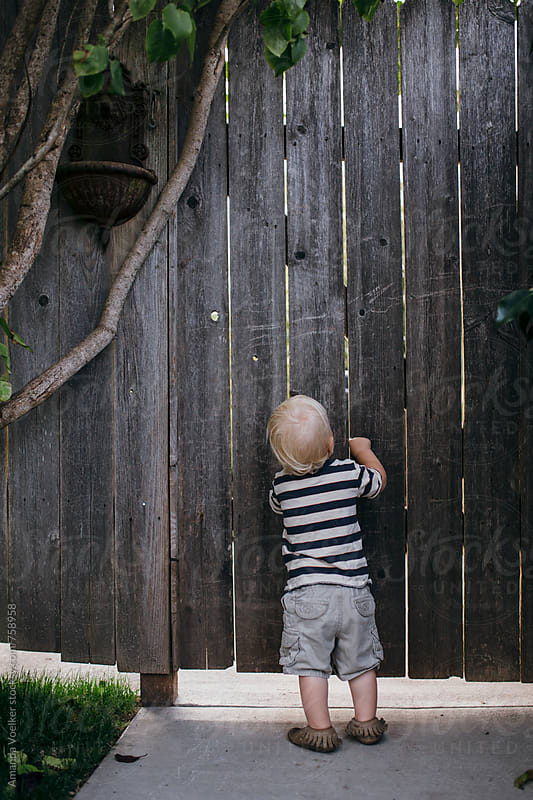 Toddler Boy Knocks on Garden Gate by Amanda Voelker for Stocksy United