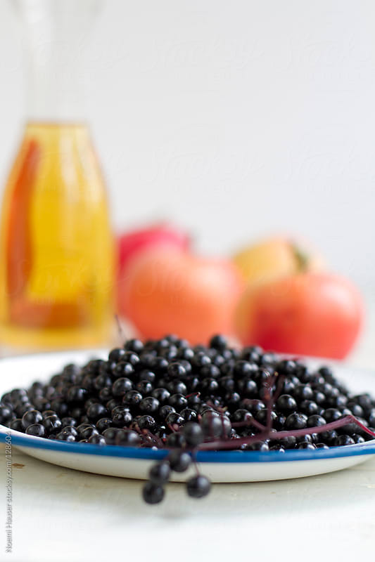 Elderberry by Noemi Hauser for Stocksy United