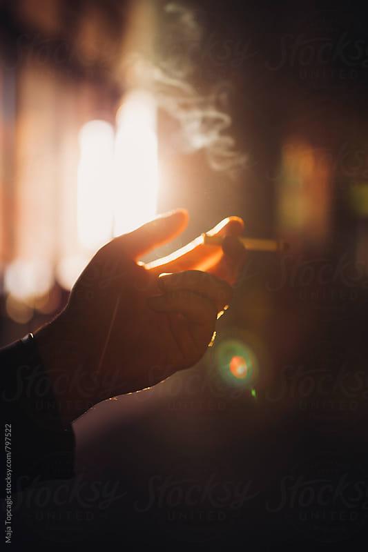 Hand in the sun by Maja Topcagic for Stocksy United