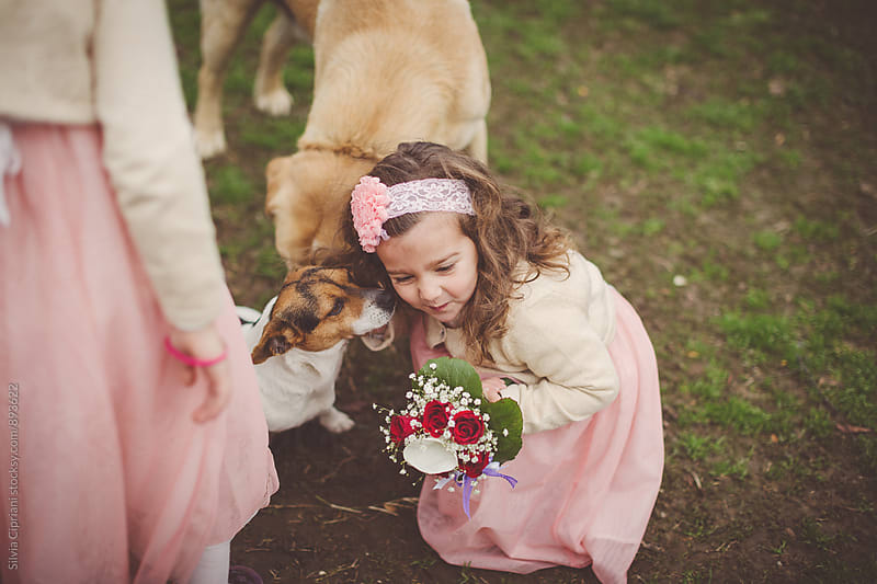 Little girl holding a bouquet, playing with dogs by Silvia Cipriani for Stocksy United