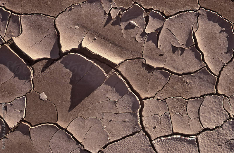 closeup of dried pool of mud caked desiccated and fractured by Ron Mellott for Stocksy United