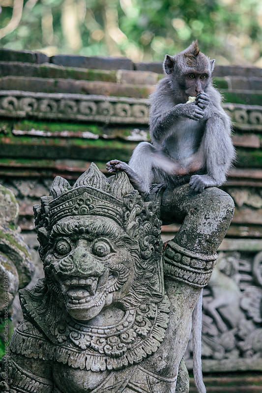 Monkey on top of asian statue, Bali, Indonesia by Alejandro Moreno de Carlos for Stocksy United