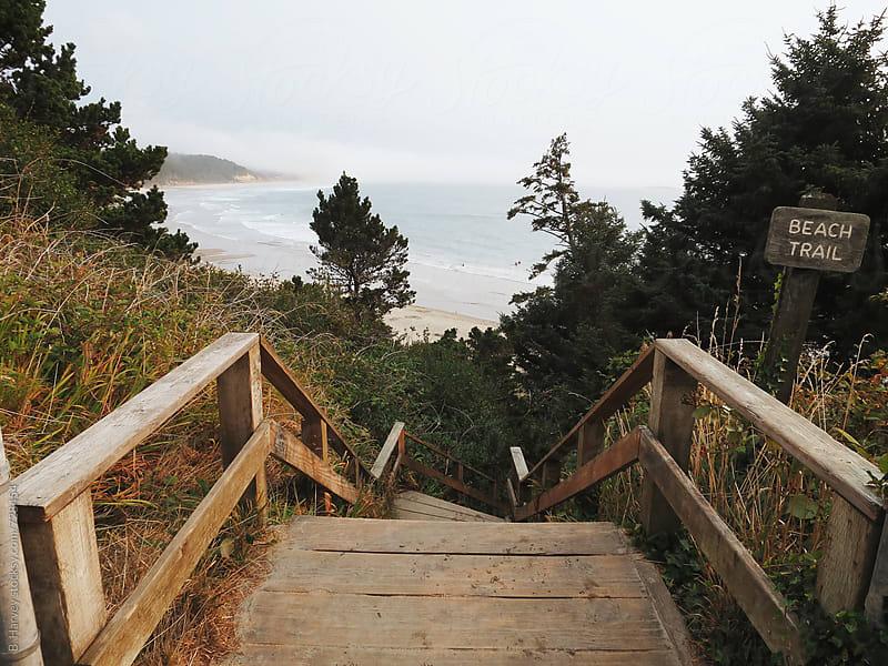 Beach Trail by B. Harvey for Stocksy United