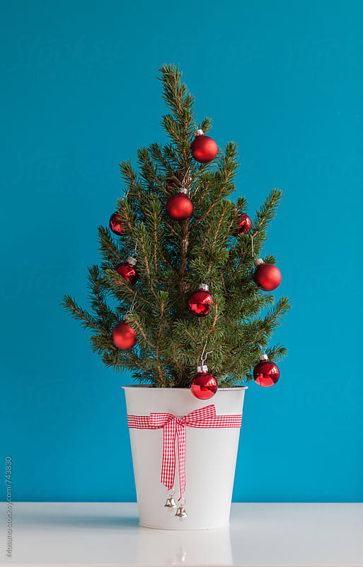 Small Christmas Tree Decorated With Red Ornaments by Mosuno for Stocksy United