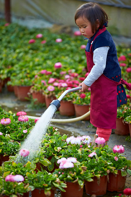 little asian girl watering flower by Bo Bo for Stocksy United