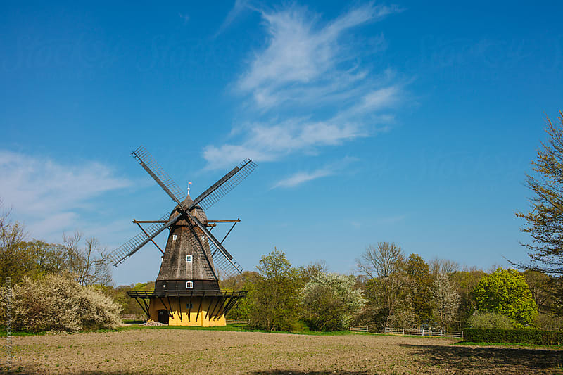 Traditional Old Windmill by Zocky for Stocksy United