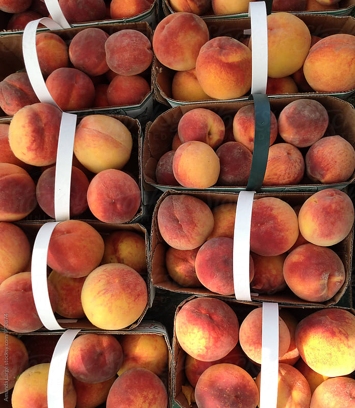 Punnets of peaches at a market stall by Amanda Large for Stocksy United
