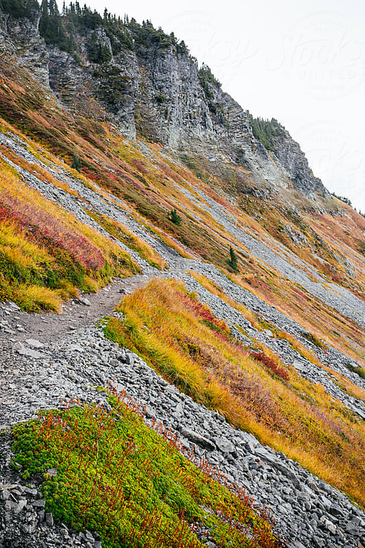 Autumnal And Rocky Sloping Mountainside In Mount Baker National Forest by Luke Mattson for Stocksy United