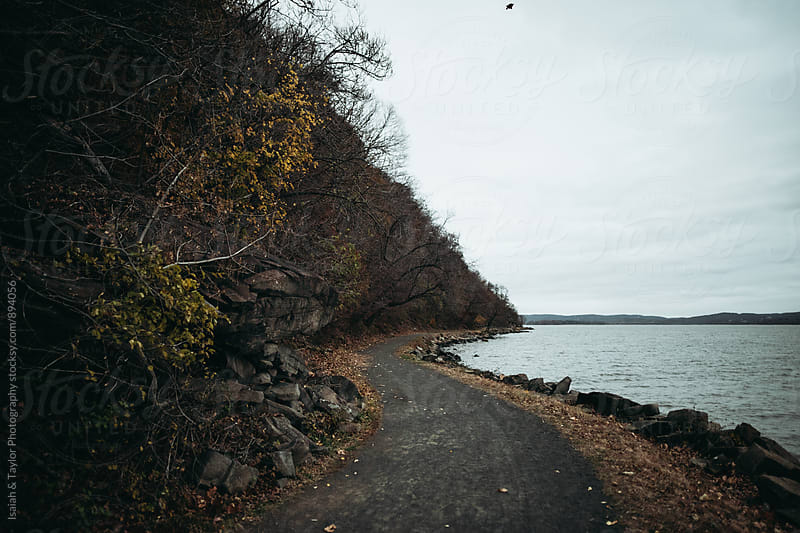 Path next to Lake by Isaiah & Taylor Photography for Stocksy United