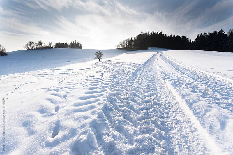 Winter path by Robert Kohlhuber for Stocksy United