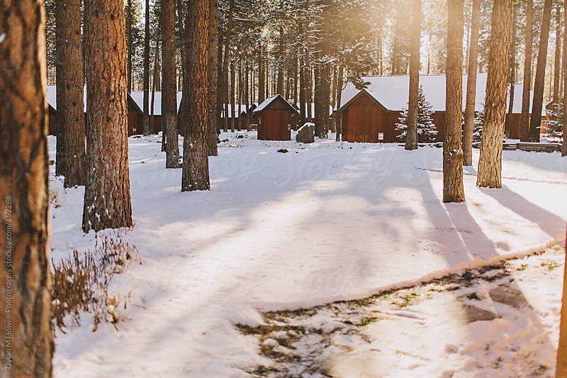 Winter Cabins by Dylan M Howell Photography for Stocksy United