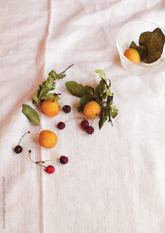 Dried Fruit on White Linen by Sara Remington for Stocksy United
