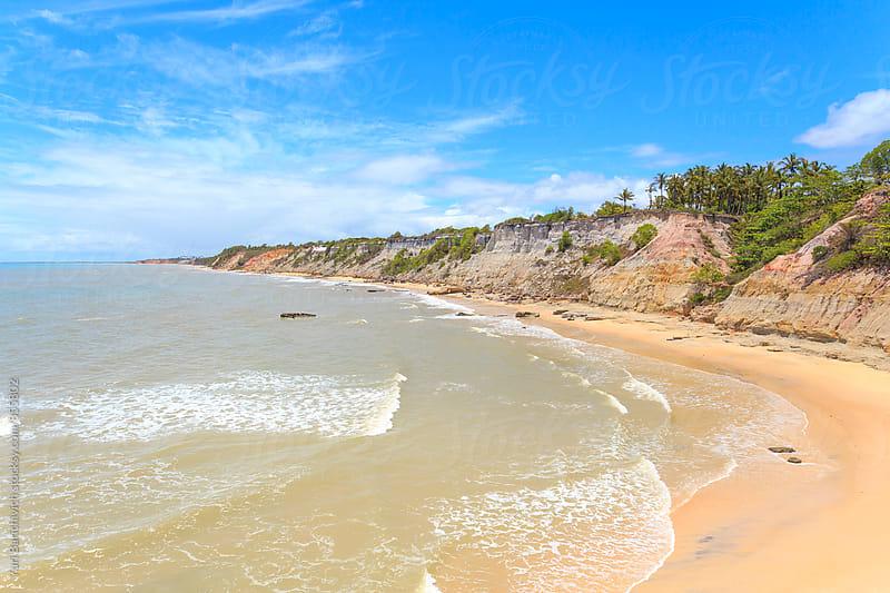 Whale Coast, Brazilian Beaches. by Yuri Barichivich for Stocksy United