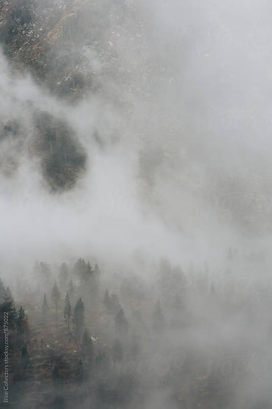 Autumn fog in the mountain by Blue Collectors for Stocksy United