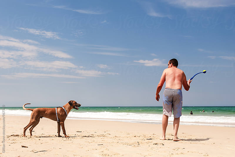 man throwing a tennis ball for a dog at the beach by Gillian Vann for Stocksy United