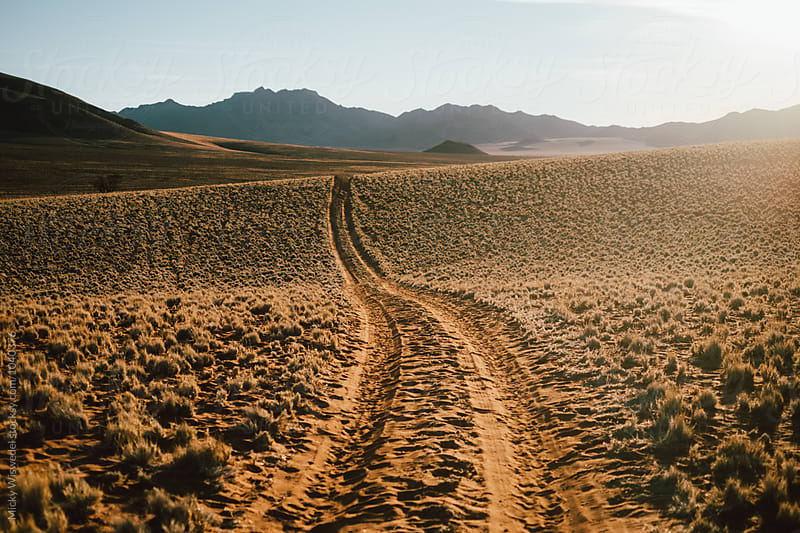 curving dirt track through the desert into the horizon by Micky Wiswedel for Stocksy United
