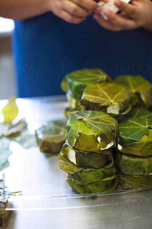 Organic Goat Cheese Wrapped in Fig Leaves by Sara Remington for Stocksy United