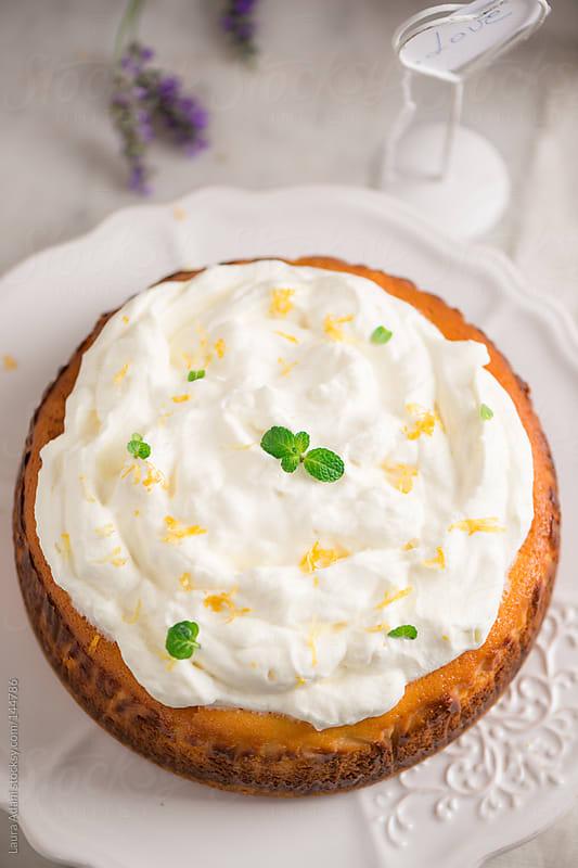 lemon cheesecake by Laura Adani for Stocksy United