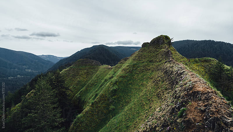 Green Oregon Mountain Top by Evan Dalen for Stocksy United