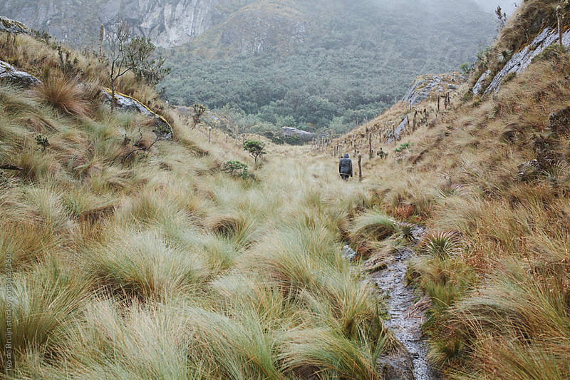 Person hiking in the cold foggy hills amid wet grasslands by Ivo de Bruijn for Stocksy United