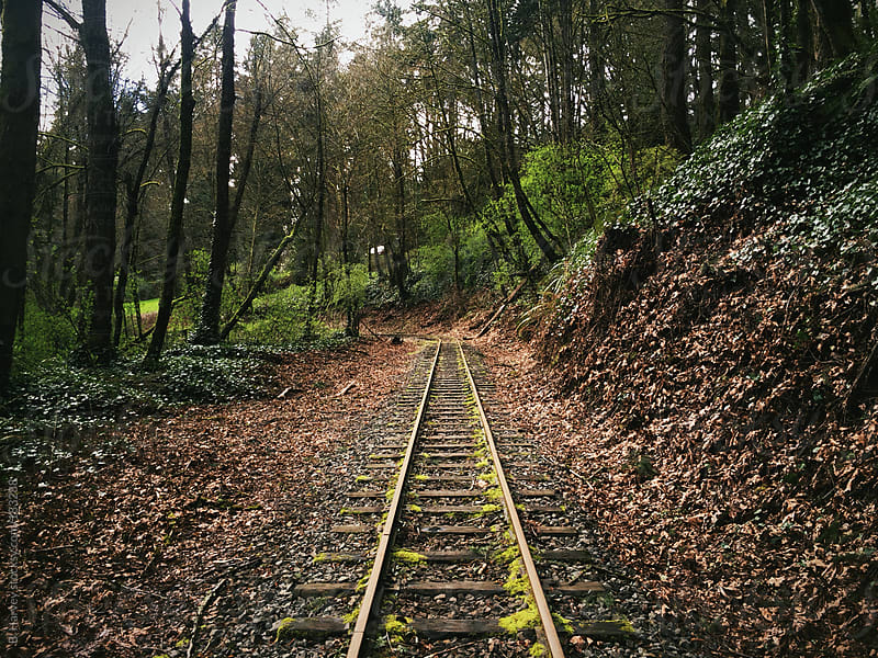 Railroad Tracks in the Heart of the Forest by B. Harvey for Stocksy United