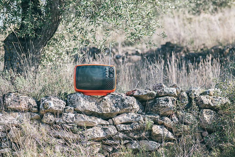 television on nature by Javier Pardina for Stocksy United