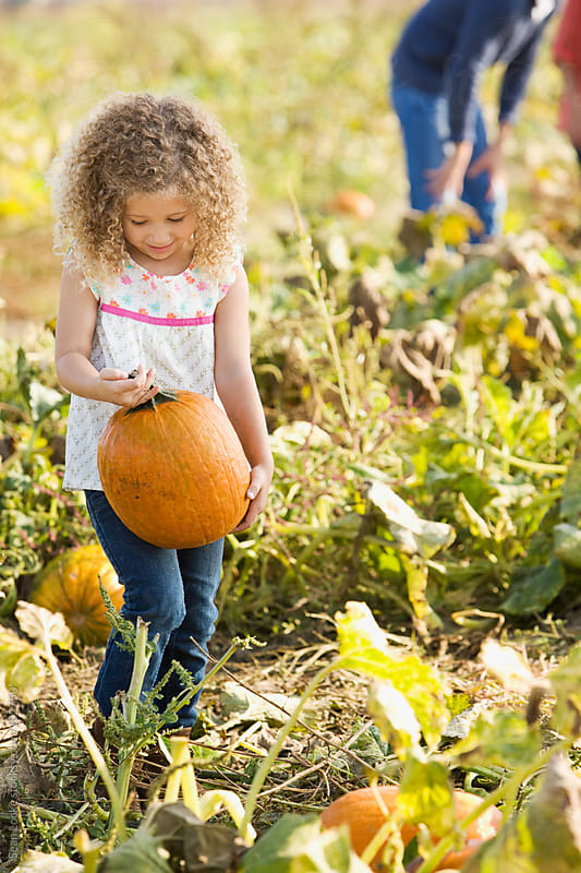 Pumpkins: Little Girl Happy With Pumpkin Choice by Sean Locke for Stocksy United