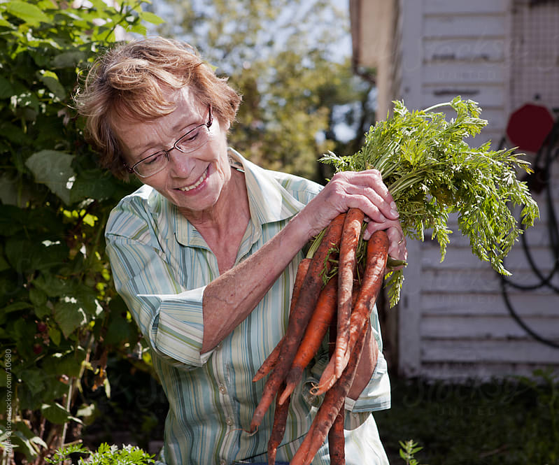 Senior Woman Inspecting Carrots by Tyler Olson for Stocksy United