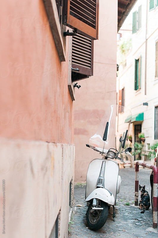 Retro White Scooter and a Calico Cat Sitting on the Street in Rome, Italy by Briana Morrison for Stocksy United