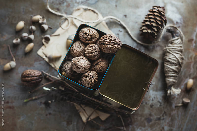 Walnuts by Tatjana Ristanic for Stocksy United