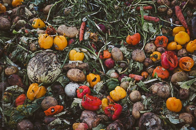 Rotting compost pile of vegetables - peppers, potatoes, onions by Rob and Julia Campbell for Stocksy United