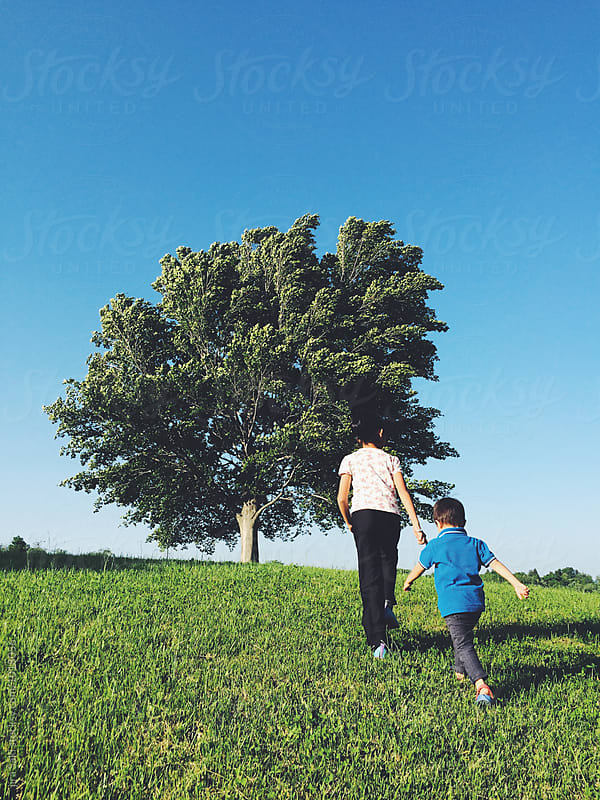 walk to the tree by jira Saki for Stocksy United