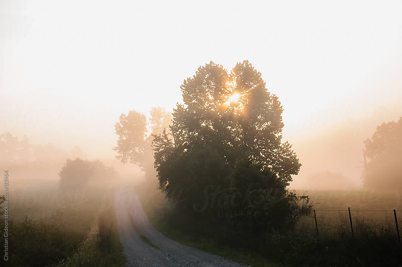 Sunrise on Country Roads by Christian Gideon for Stocksy United