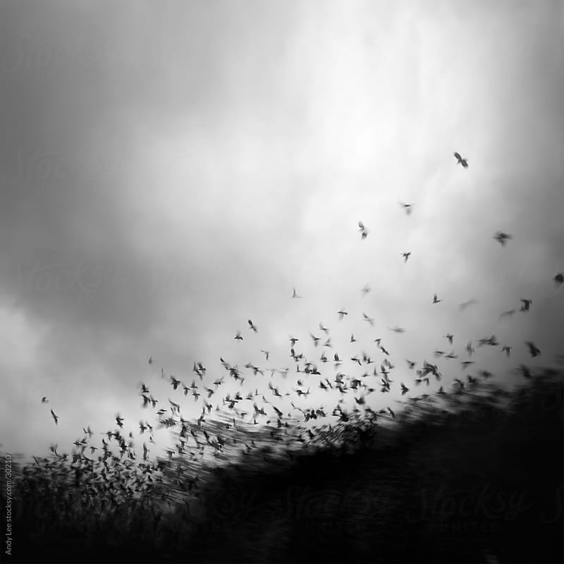 Without you my whole world comes apart at the seams by Andy Lee for Stocksy United