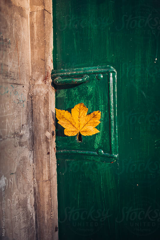 Vintage green door with leaf in doorknob by Maja Topcagic for Stocksy United