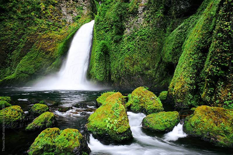 Wahclella Falls, Columbia River Gorge by Thomas Shull for Stocksy United