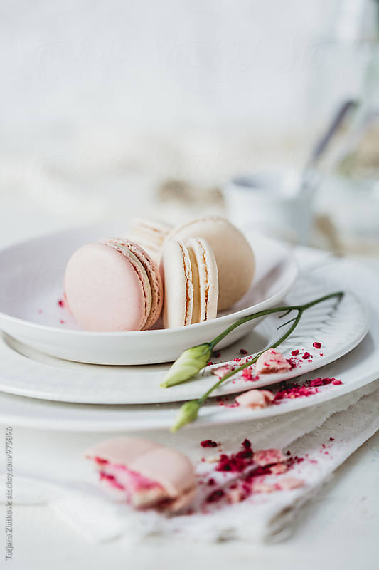 Raspberry and vanilla macarons by Tatjana Ristanic for Stocksy United
