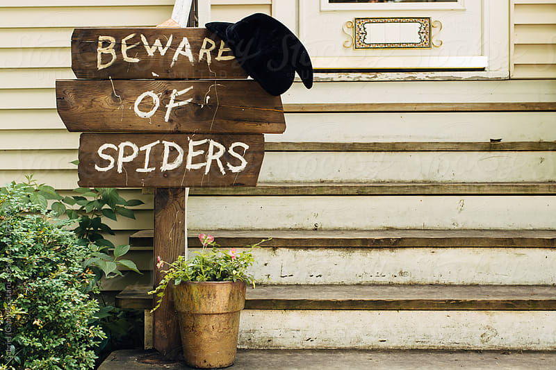 Beware of Spiders sign with a witch hat on it by Gabriel (Gabi) Bucataru for Stocksy United