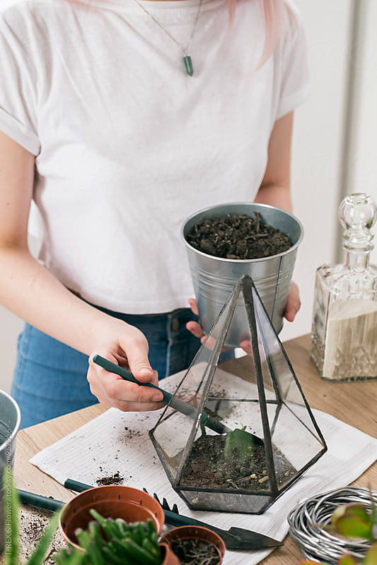 Woman pouring soil into small greenhouse by Danil Nevsky for Stocksy United