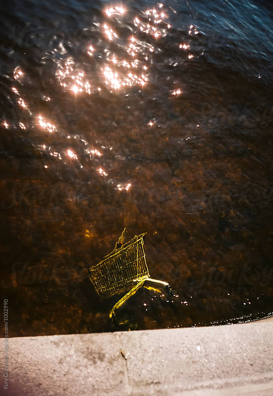 Shopping cart discharged into the river. by Yury Goryanoy for Stocksy United