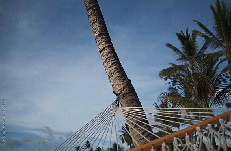 Laying on a Hammock in Hawaii by Lucas Saugen for Stocksy United